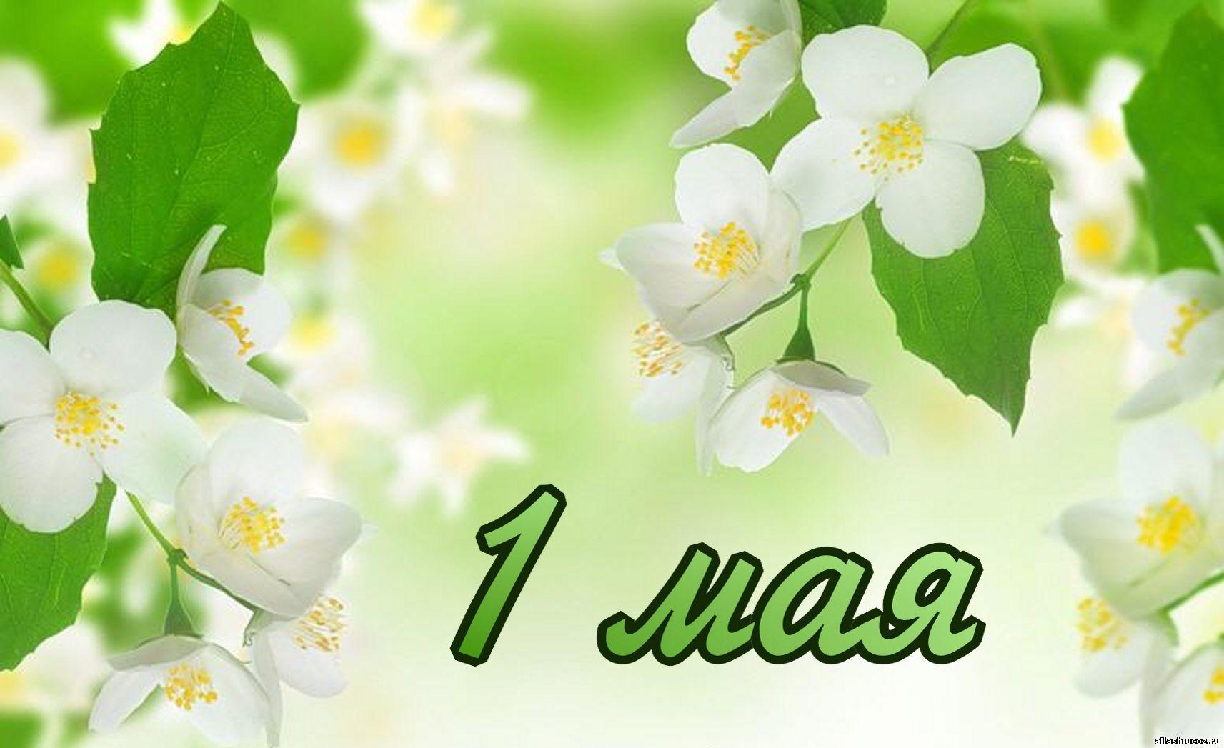 Поздравление с 1 мая с весной